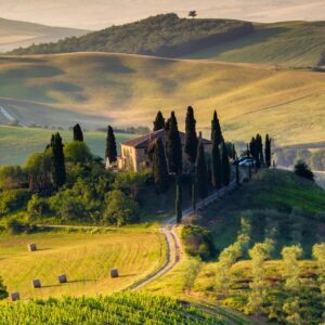 Ultimate Wine & Food Tour -WINE WINE WINE ! Wine & Food Tour in Chianti (3 Wineries in 1 Day)