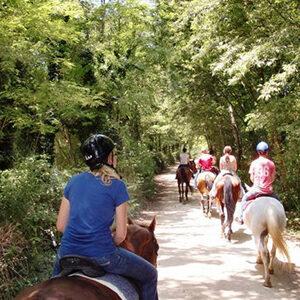 CHIANTI HORSEBACK RIDING & WINE TOUR