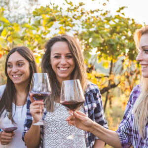 Ultimate Small Group – EDUCATIONAL WINE TOUR at WINE SCHOOL IN CHIANTI